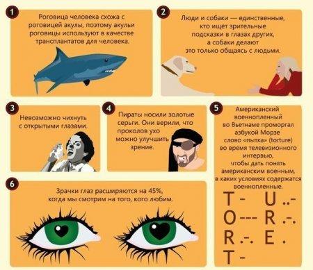 50 интересных фактов о глазах.