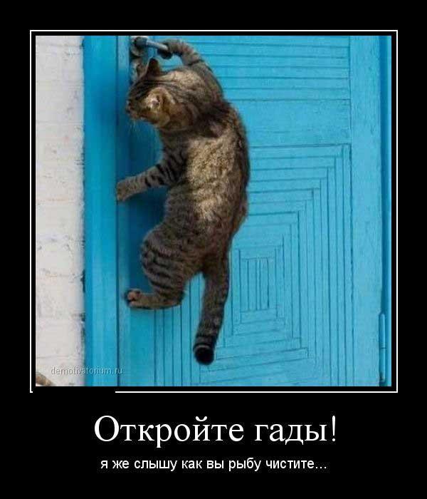 Кризис больно-таки вдарил » Сайт приколов — Безумно.ру