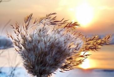 Зима! Что может быть прекрасней и красивей.